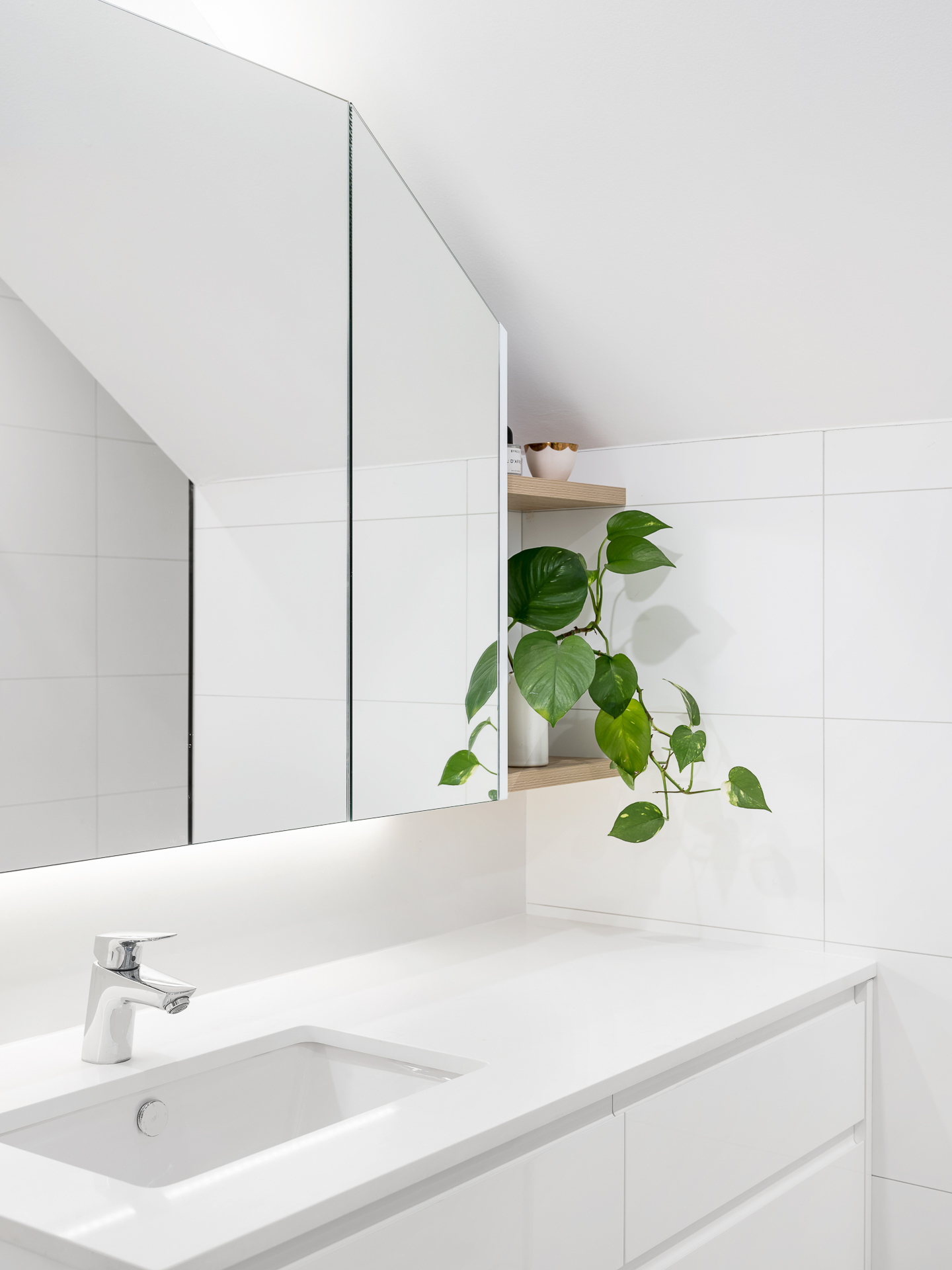 Custom bathroom Rozelle